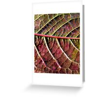 autumn purple Greeting Card