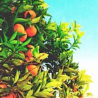 Ohh La La Oranges by polishpattern