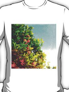 Ohh La La Oranges T-Shirt