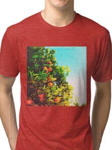 Ohh La La Oranges Tri-blend T-Shirt