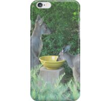 Wild Kangaroos Quench their thirst. 'Arilka', Mt. Pleasant. S.Aust. iPhone Case/Skin