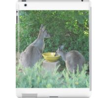 Wild Kangaroos Quench their thirst. 'Arilka', Mt. Pleasant. S.Aust. iPad Case/Skin
