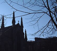 St Mary's Cathedral,Edinburgh by DoreenPhillips