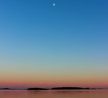 Moon Over the Bay by Kathleen Daley