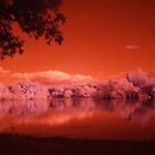 Lake in Infrared by InArcady