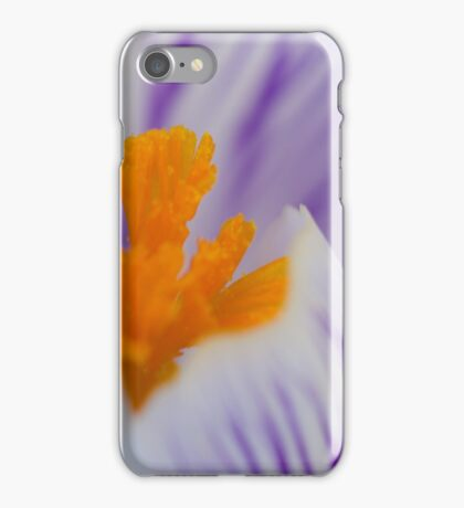 Crocus macro iPhone Case/Skin