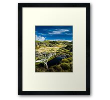small river in rural valley Framed Print