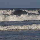A set of Waves by Iani