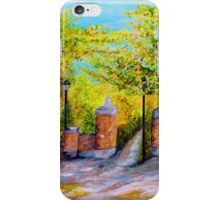 Toomer's Corner Oaks iPhone Case/Skin