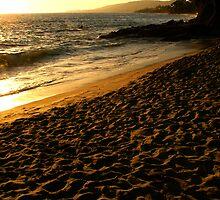 boy at the beach laguna niguel california by David Pond