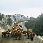 Cattle Drive by BartElder