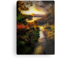 Killarney Lake Path Metal Print