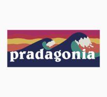 Pradagonia waves Kids Clothes