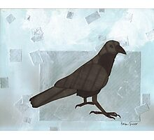 Raven in the Snow Photographic Print