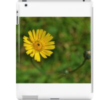 Spring - where are you? iPad Case/Skin
