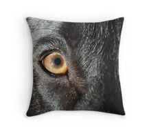 All Colors Throw Pillow