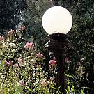 Lamppost by CarolM