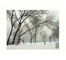 Winter trees Art Print