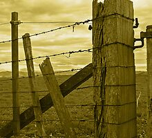 The fence - sepia by KarenMccallum
