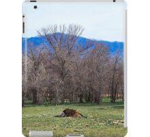 Dead Cow iPad Case/Skin