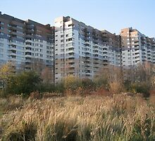 East Berlin, 60s Housing Estate by knomz