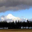 Mount Blanc...... by Larry Llewellyn