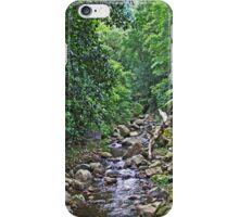 Mountain stream iPhone Case/Skin