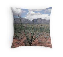 Ocotillo in Bloom Throw Pillow