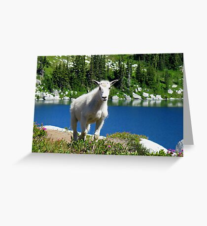 Hiking Partner Greeting Card