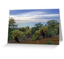 Cholla Cacti in the Desert Greeting Card