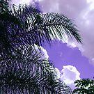 Purple Skies by MichelleR