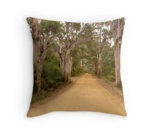 Back road to the beach Throw Pillow