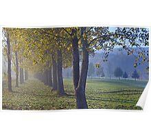 autumn in austria Poster