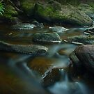 Glenbrook Creek by Joel  Haldane
