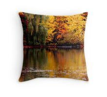 Above and Below. Throw Pillow