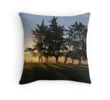 Together We Stand Limbs Outstretched Facing the Sunset Of Another Glorious Day Throw Pillow