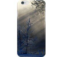 16.2.2015: Frozen Trees iPhone Case/Skin