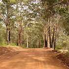 Road through the ranges by georgieboy98