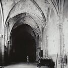 Inside the Cathedral of Toledo by Elana Bailey
