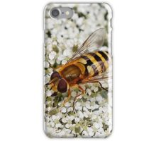 Hoverfly on Queen Anne Lace iPhone Case/Skin