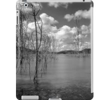 Water Trees iPad Case/Skin