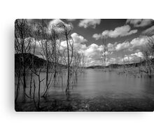 Water Trees Canvas Print