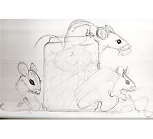 "Sketch ""the Pink sugar mice"" Photographic Print"