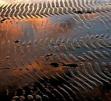 Rye Abstract by Harry Oldmeadow