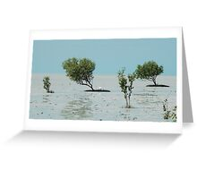 Birdwatchers paradise - Roebuck Bay Greeting Card