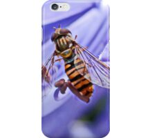 Hoverfly on Agapanthus iPhone Case/Skin