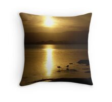Cloudy Sunset over Water - Lake Illawarra (3) with birds Throw Pillow