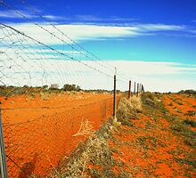 Dog Fence by willeraus