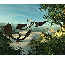 Early Morning Dragon Snacks Photographic Print