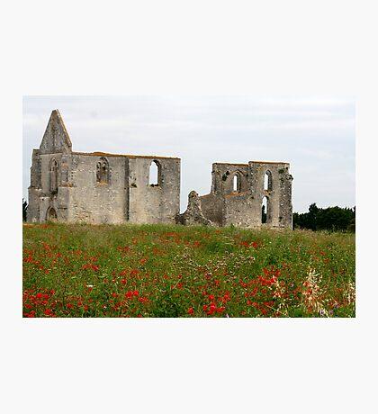 l'Abbaye de Châteliers Photographic Print